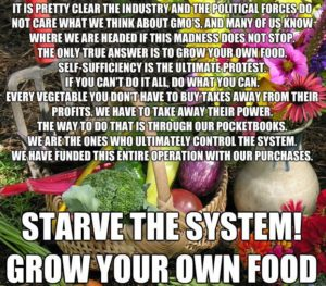 Starve The System