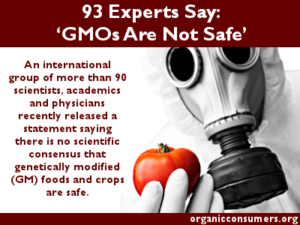 93 Experts Say GMOs Not Safe