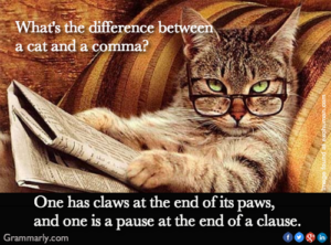 What Is The Difference Between A Cat And A Comma?
