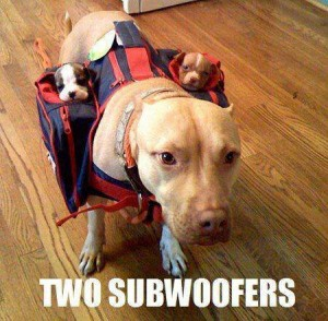 Two Sub-Woofers