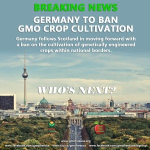 Germany Too Bans GMOs
