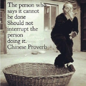 The Person Saying It Cannot Be Done...
