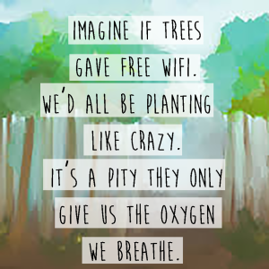 Trees And WiFi