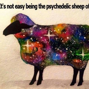 It's Not Easy Being The Psychedelic Sheep In The Family