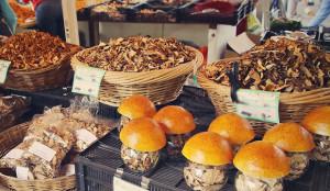 Medicinal-Mushroom-Cancer-Prevention
