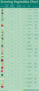 Growing Vegetables Chart