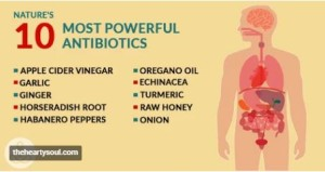 Ten Powerful Natural Antibiotics
