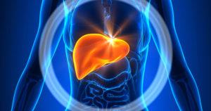 Black Seed Reverses Liver Disease