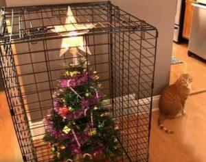 Protected Christmas Tree