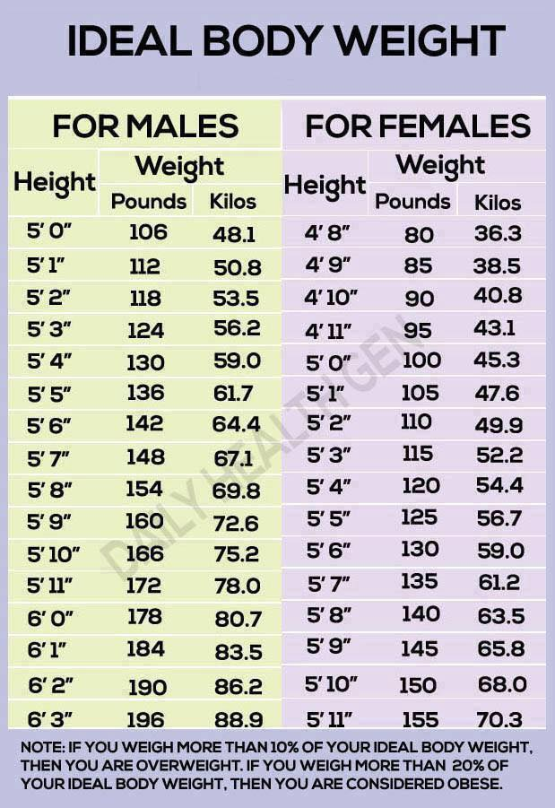 Ideal Body Weight Chart  On Life And Livingness  By Tom