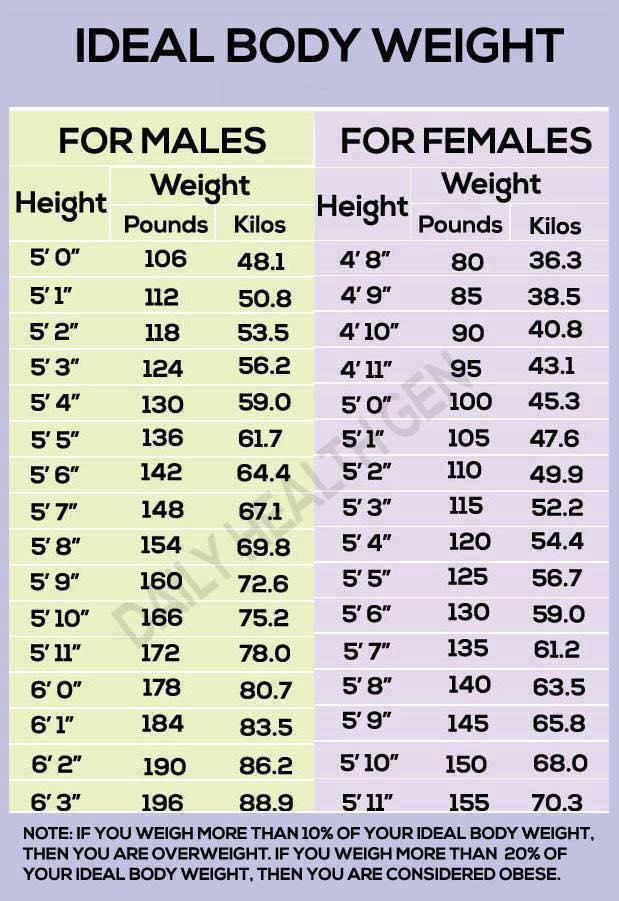 Ibw Chart Ottodeemperor