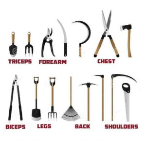 Exercise_Tools