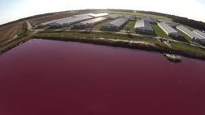 Pig_Waste_Lake